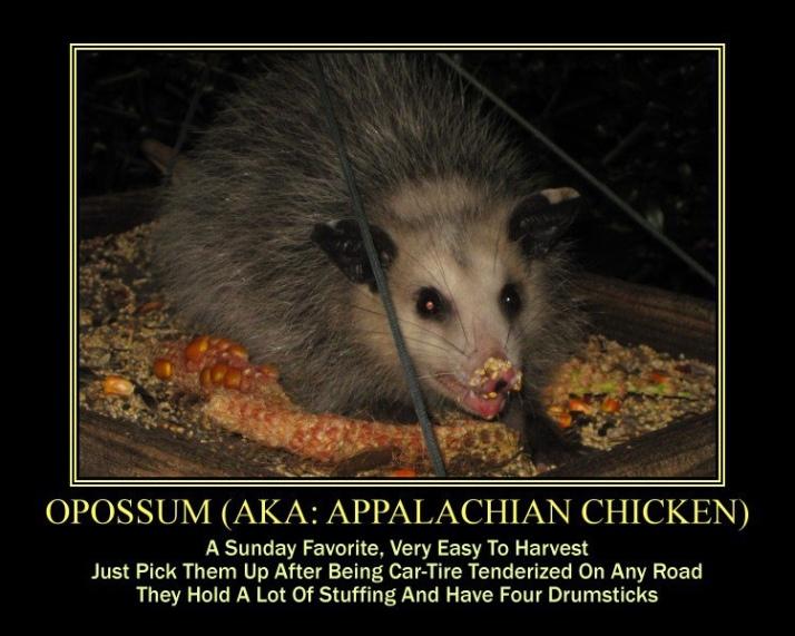 Photo courtesy of Tony Alter via www.flicker.com/creativecommons